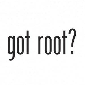 Motorola root